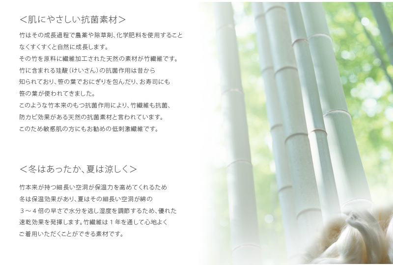竹繊維の説明